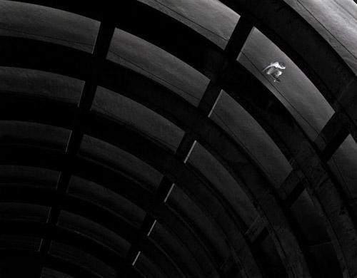 skateboard the parking garage